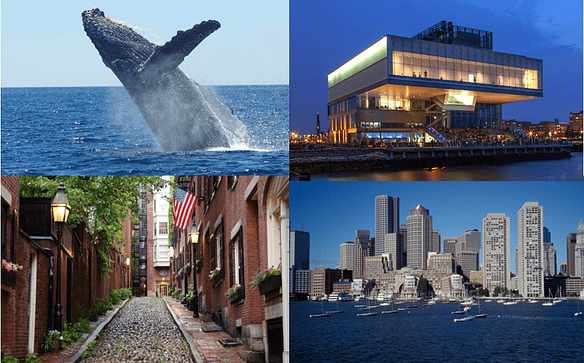 Inspiration of copywriting in Boston: Beacon HIll, Whale watch, Boston skyline, Institute of Contemporary art